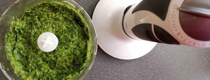Bärlauch-Pesto und Bärlauch-Öl